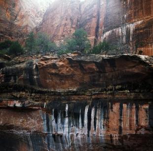 Zion Rocks