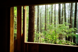 Cabin Window I