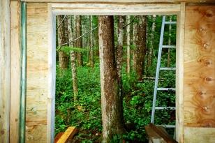 Cabin Window II