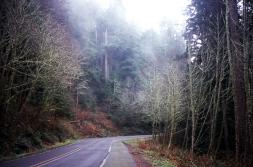HWY 101 Mist