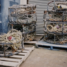 Newport Bay Nets