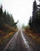 The Roads Call II