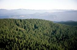 Oregon Expanse