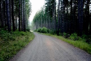 The Roads Call