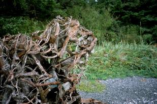 Nuchatlitz Sculpture