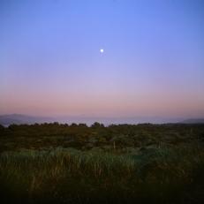 Moon Rise Bay