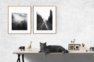 Angels_Road_BW_catmockup