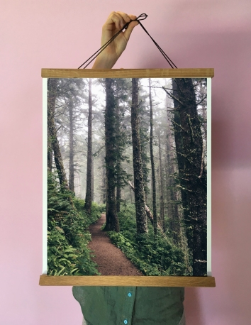 forest_path_rails
