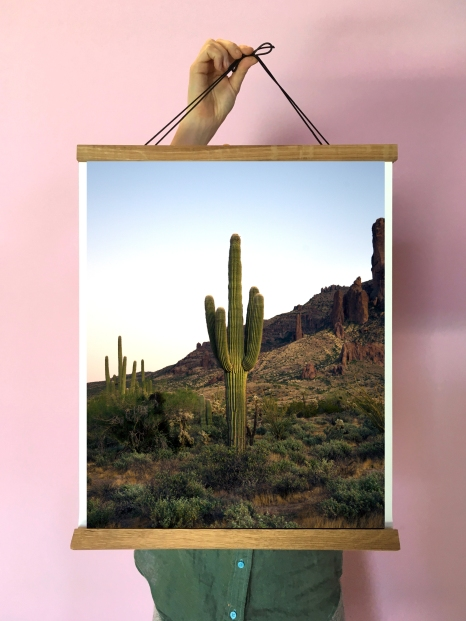 SaguaroSuperstition_mock